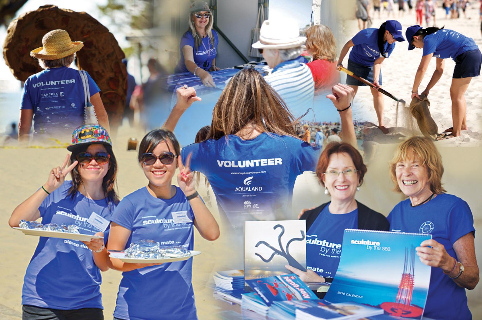 volunteers montage
