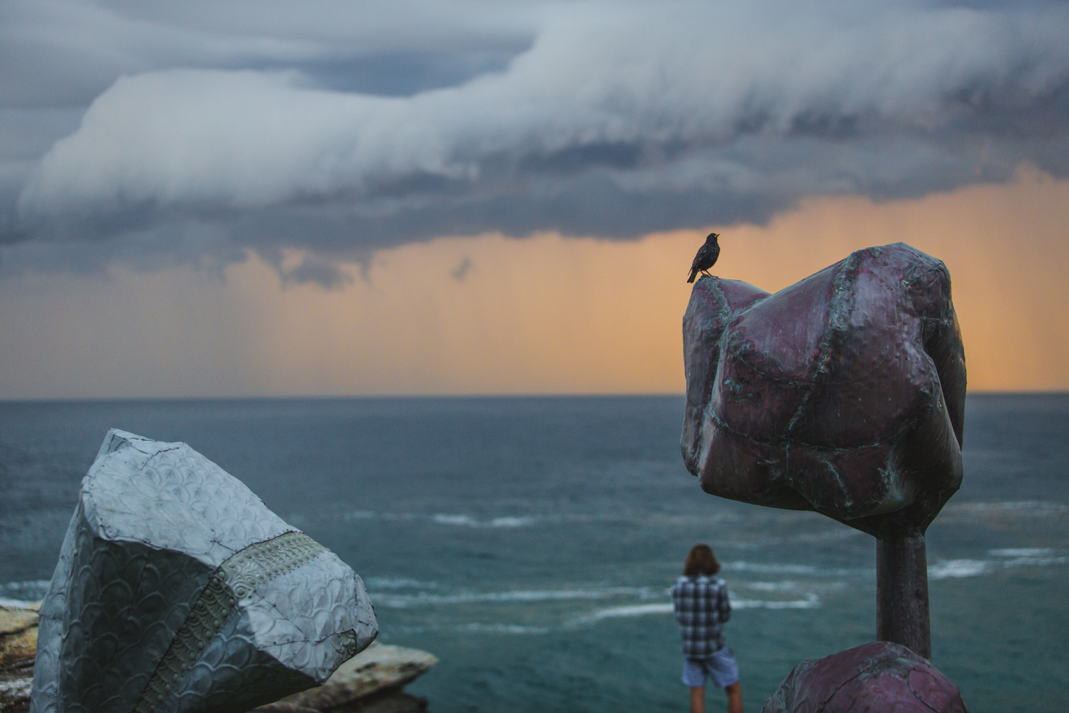Deborah Sleeman, forest, Sculpture by the Sea, Bondi 2015. Photo Jessica Wyld