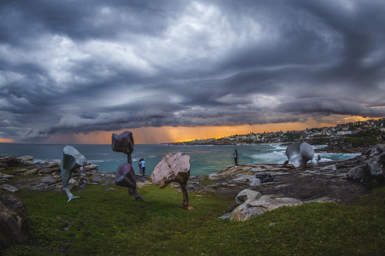 Deborah Sleeman, forest, Sculpture by the Sea, Bondi 2015. Photo Jessica Wyld