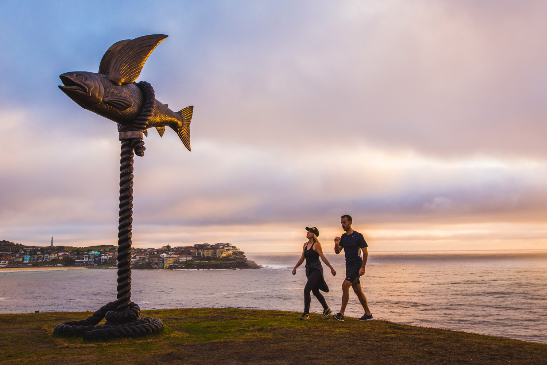 Gillie & Marc Schattner, flying fish, Sculpture by the Sea, Bondi 2015. Photo Jessica Wyld.