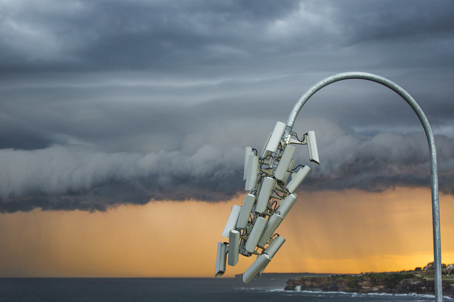 Jakub Geltner, nest 06, Sculpture by the Sea, Bondi 2015. Photo Jessica Wyld