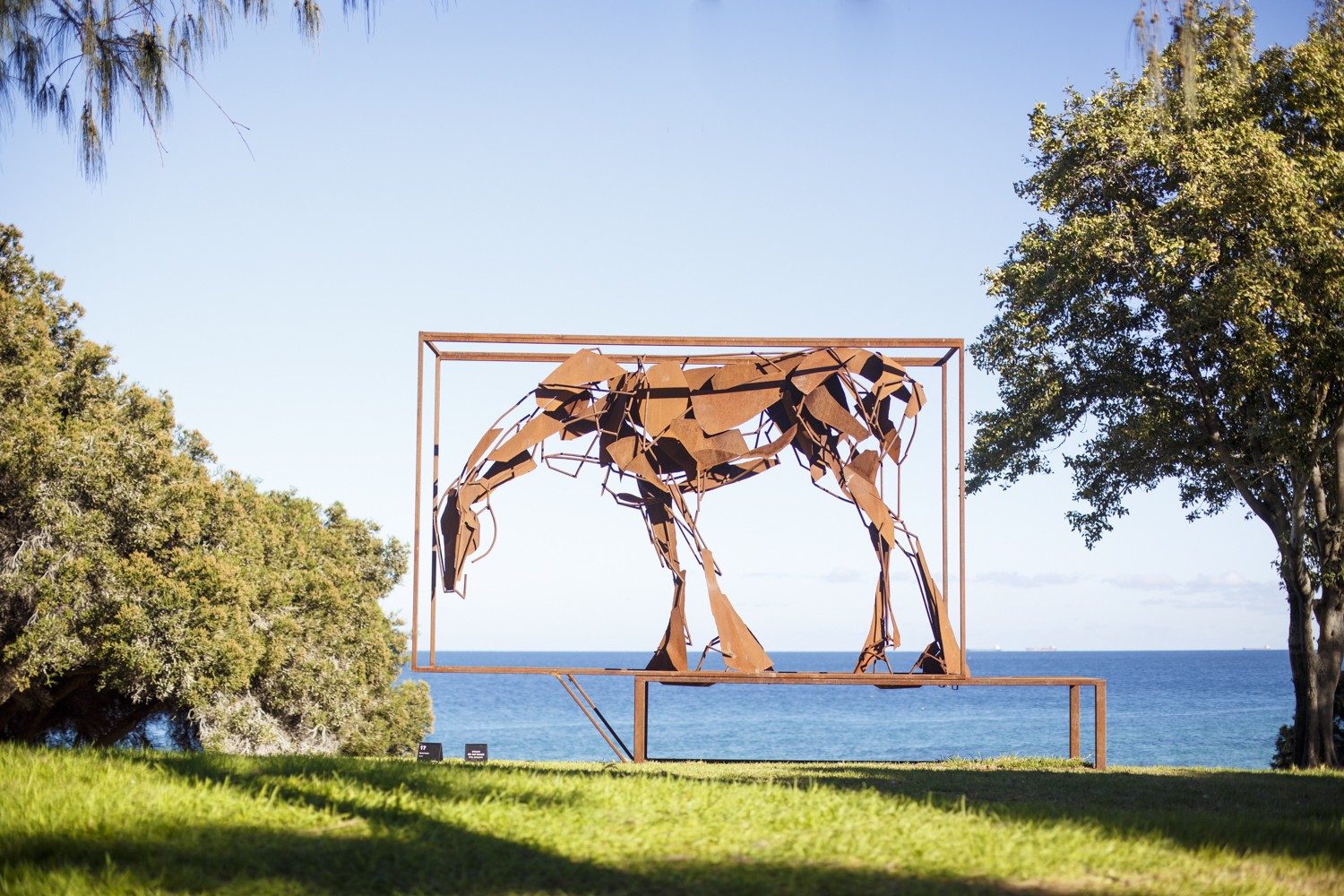 Harrie Fasher, Boxed, Sculpture by the Sea, Cottesloe 2016. Photo Jessica Wyld